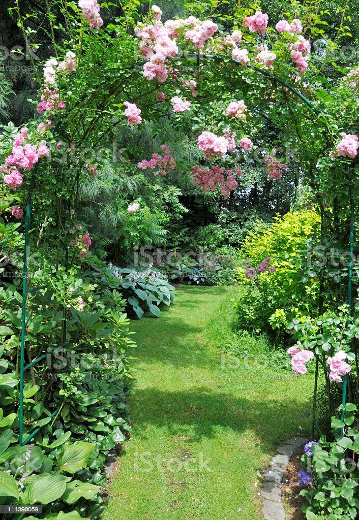 Romantic rose garden stock photo