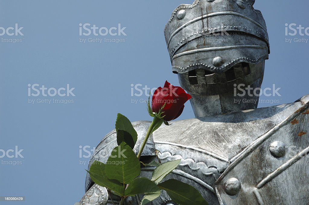 Romantic Rusty Knight Offers Rose stock photo