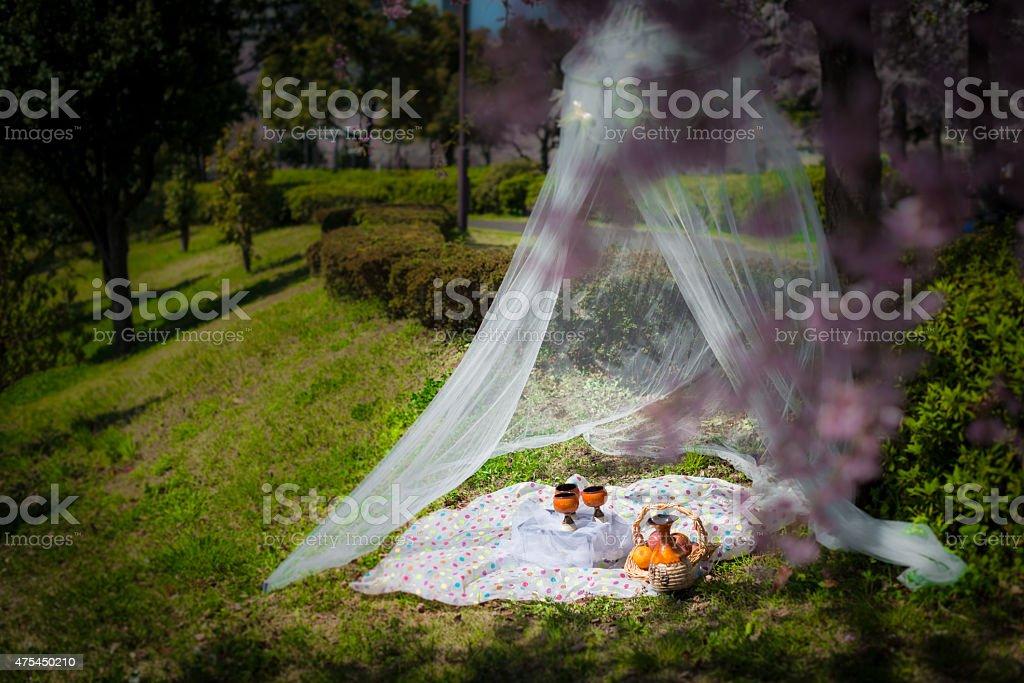 Romantic Setup for Spring Picnic royalty-free stock photo