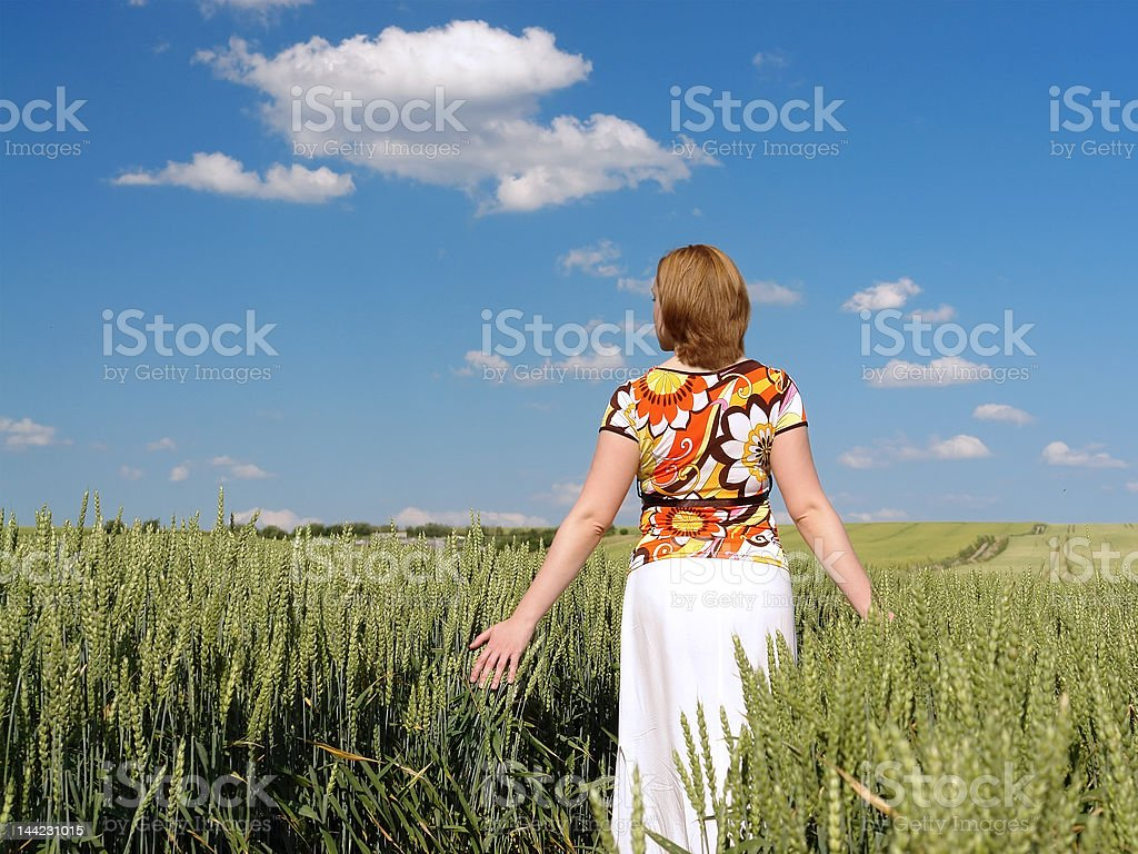 Romantic stroll in wheat corn royalty-free stock photo