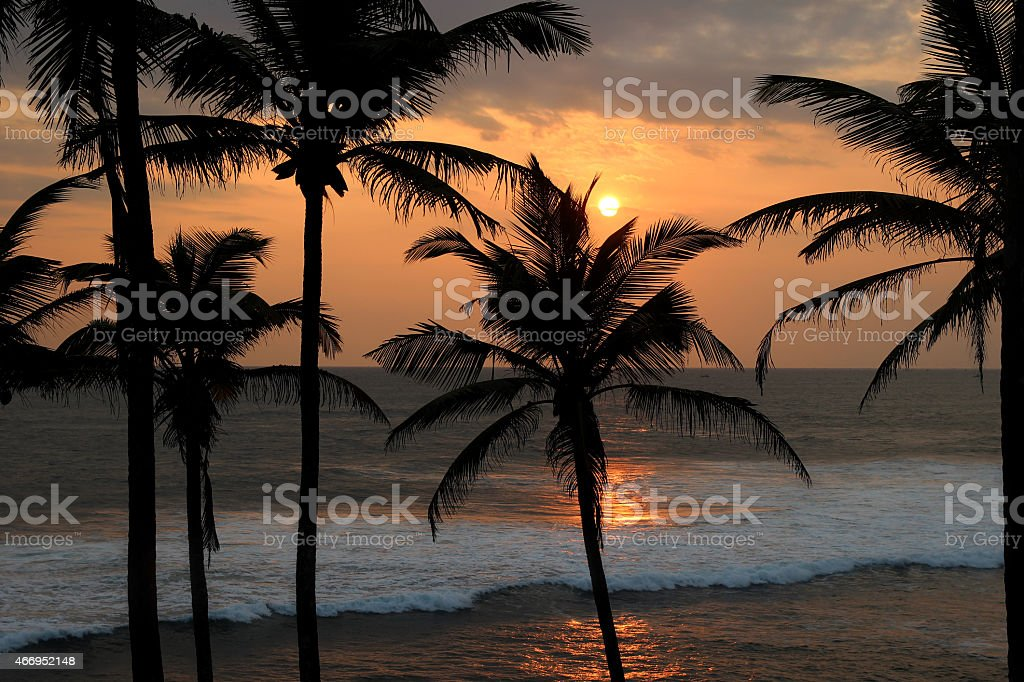 romantic sunset over the sea waves and palm trees silhouettes royalty-free stock photo