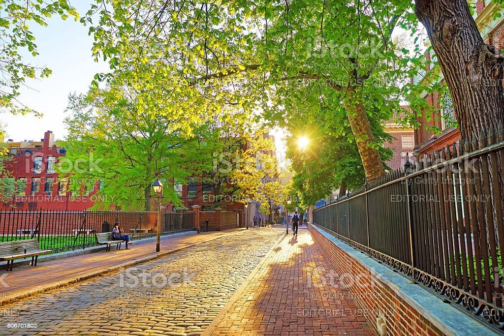 Romantic sunset viewed through the tree leaves in Philadelphia stock photo
