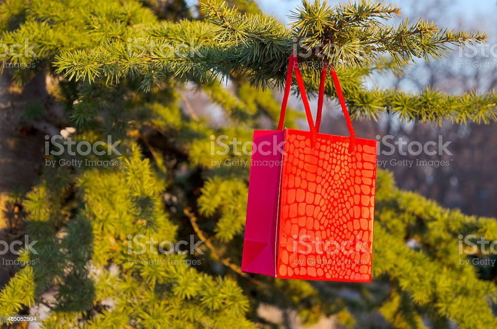 Romantic surprise, a gift hanging from a branch royalty-free stock photo