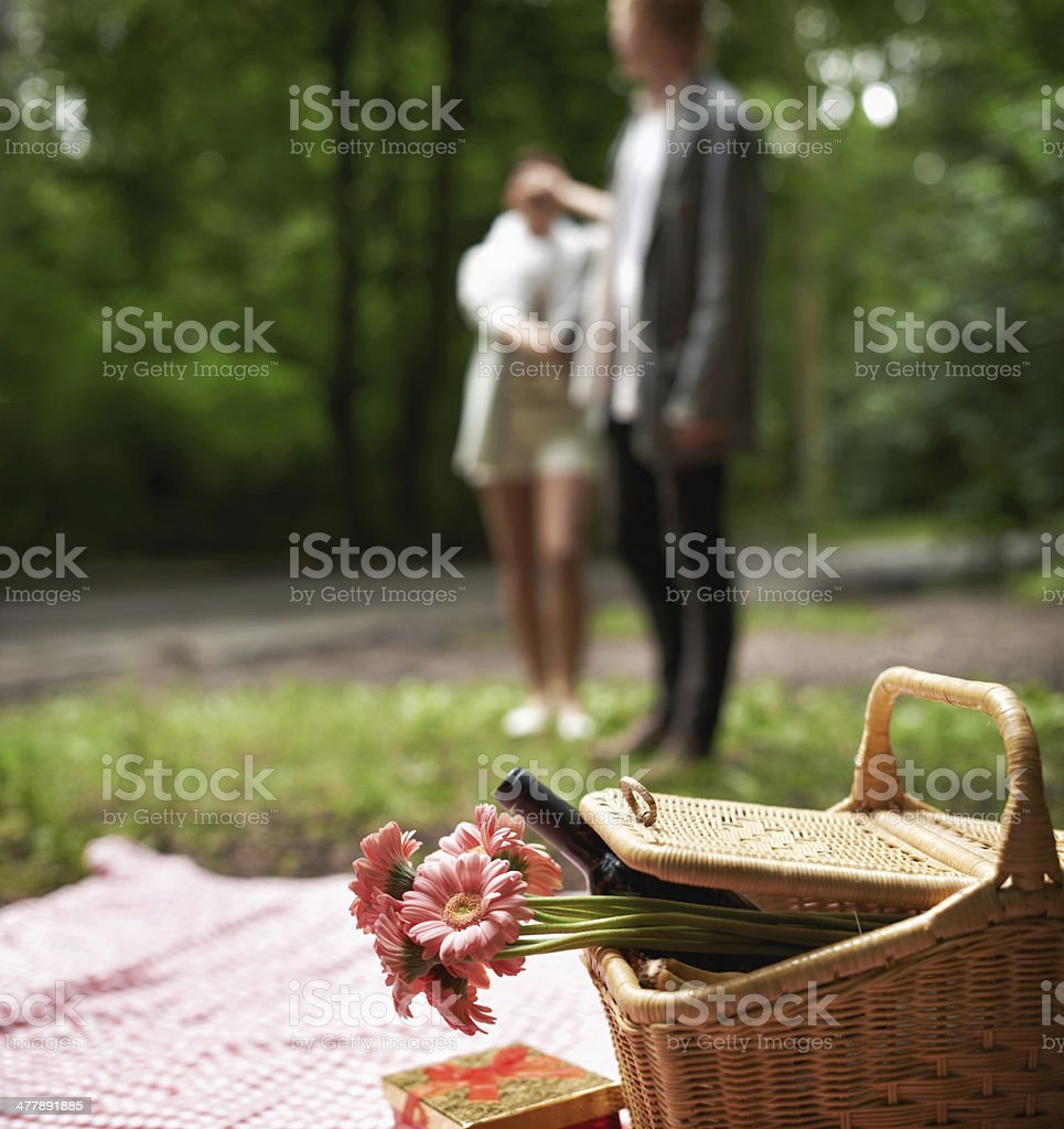 Romantic surprise in the forest royalty-free stock photo