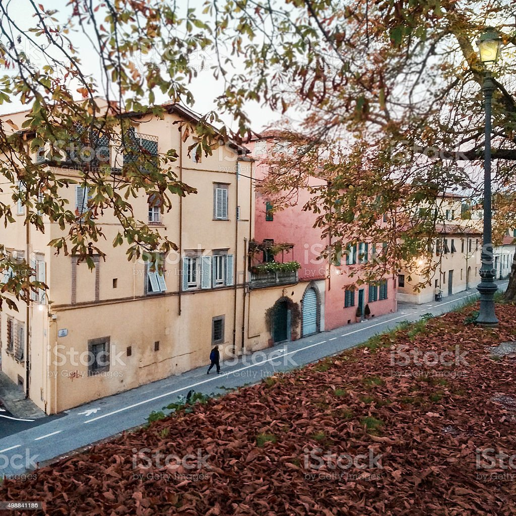 Romantic townscape in Autumn with fallen leaves stock photo