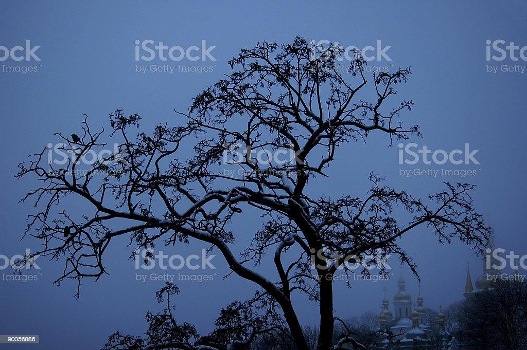 Romantic tree royalty-free stock photo
