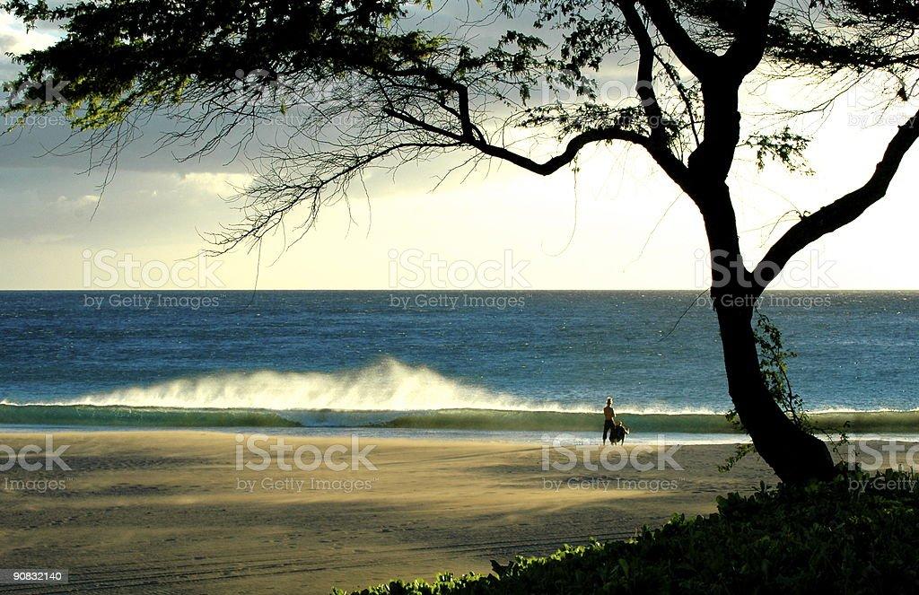 Romantic wave brake on the Big Isand royalty-free stock photo