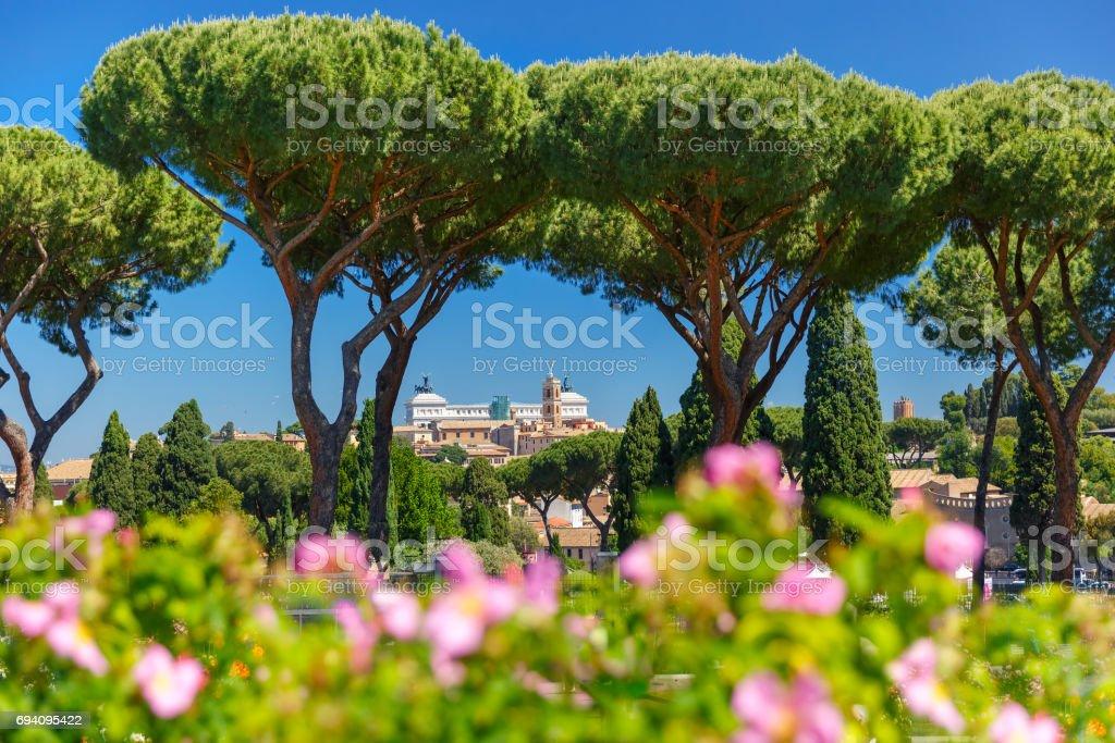Rome Rose Garden, Italy stock photo