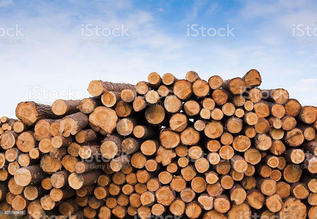 rondwood stock photo