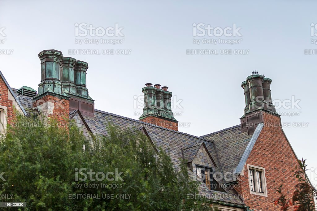 Roof and Chemny in San Francisco stock photo
