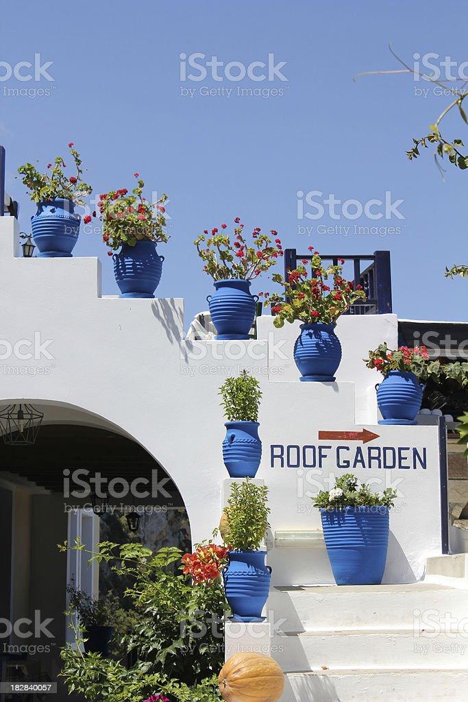 Roof garden stock photo