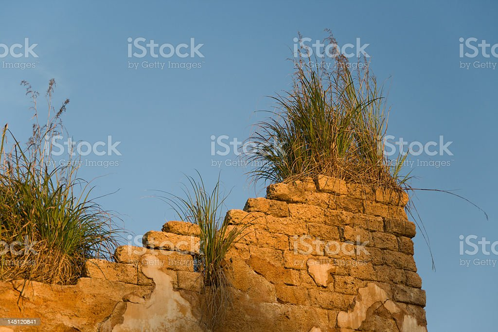 Roof of African Building royalty-free stock photo