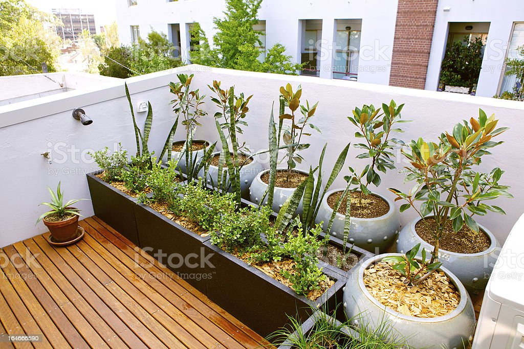 Roof Terrace royalty-free stock photo