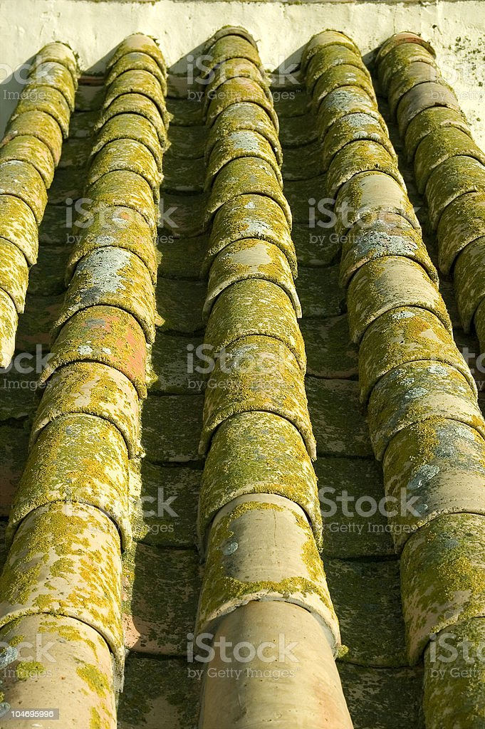 Roof tiles. Fortress in Carmona, Spain royalty-free stock photo