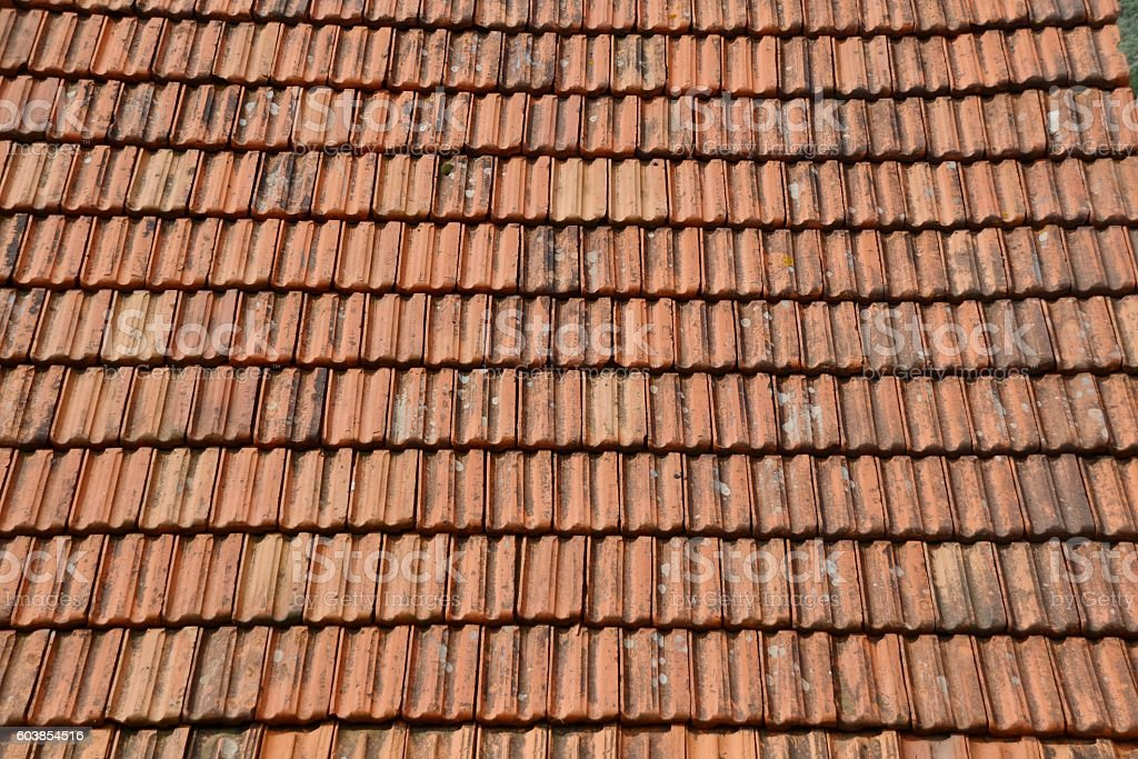 Roof tiles. stock photo
