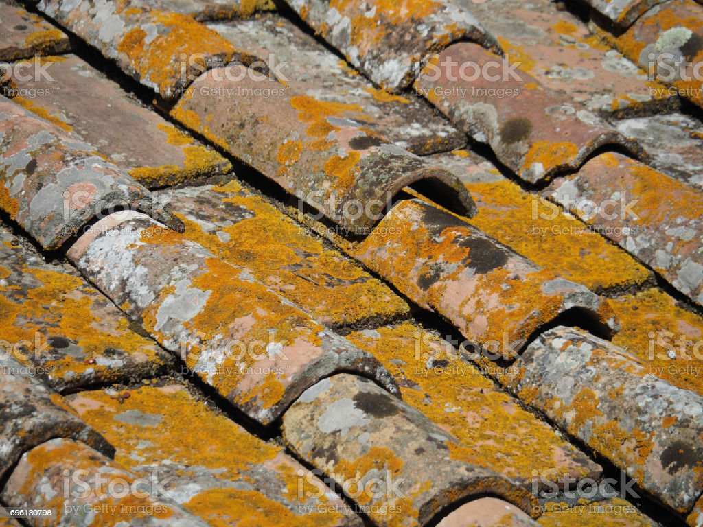 Roof Tiles with Lichen stock photo