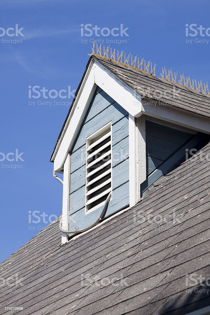 Roof Top Gable with Bird Spikes stock photo