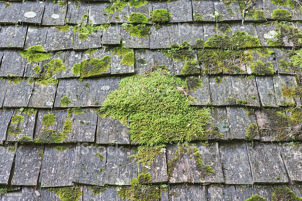Roof with cedar shingles and moss royalty-free stock photo