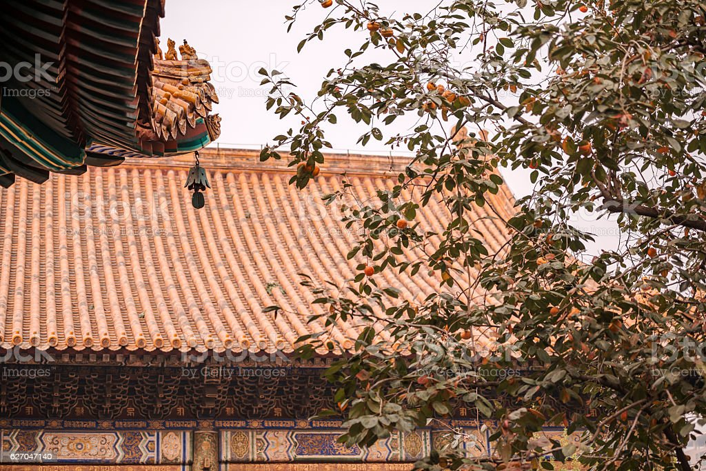 Roof with wind bell and persimmon tree at Lama Temple stock photo