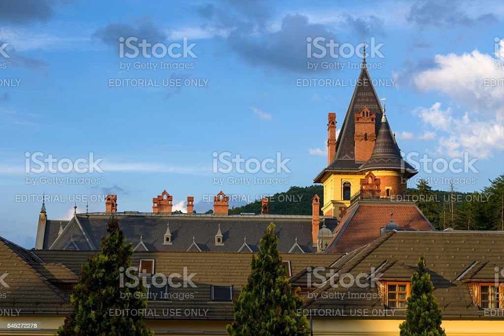Roofing of old castle stock photo