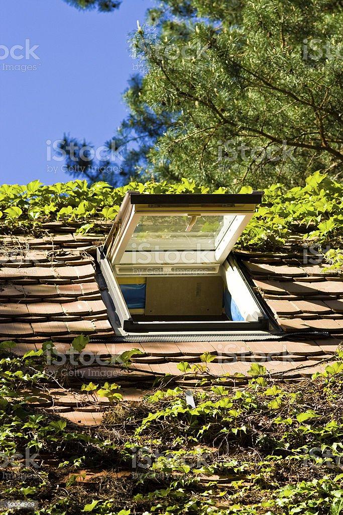 roof-light stock photo