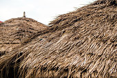Roofs made from the blade of grass