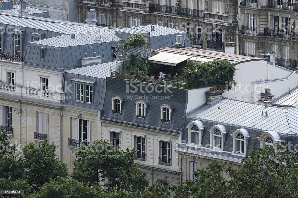 Roofs of Paris, France royalty-free stock photo