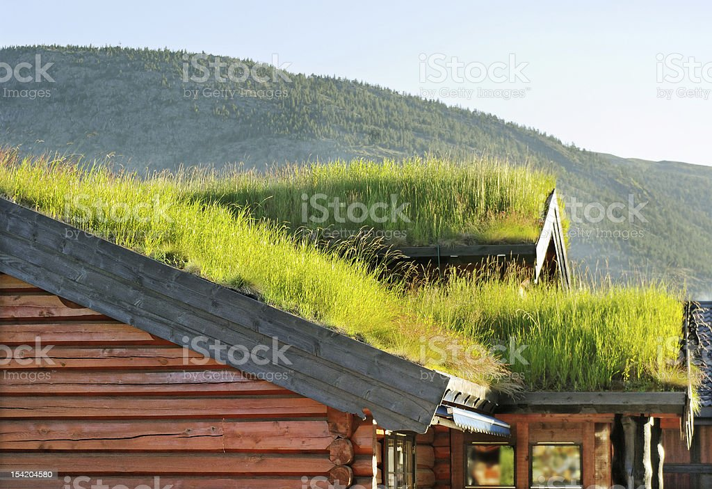 Roofs with grass. royalty-free stock photo