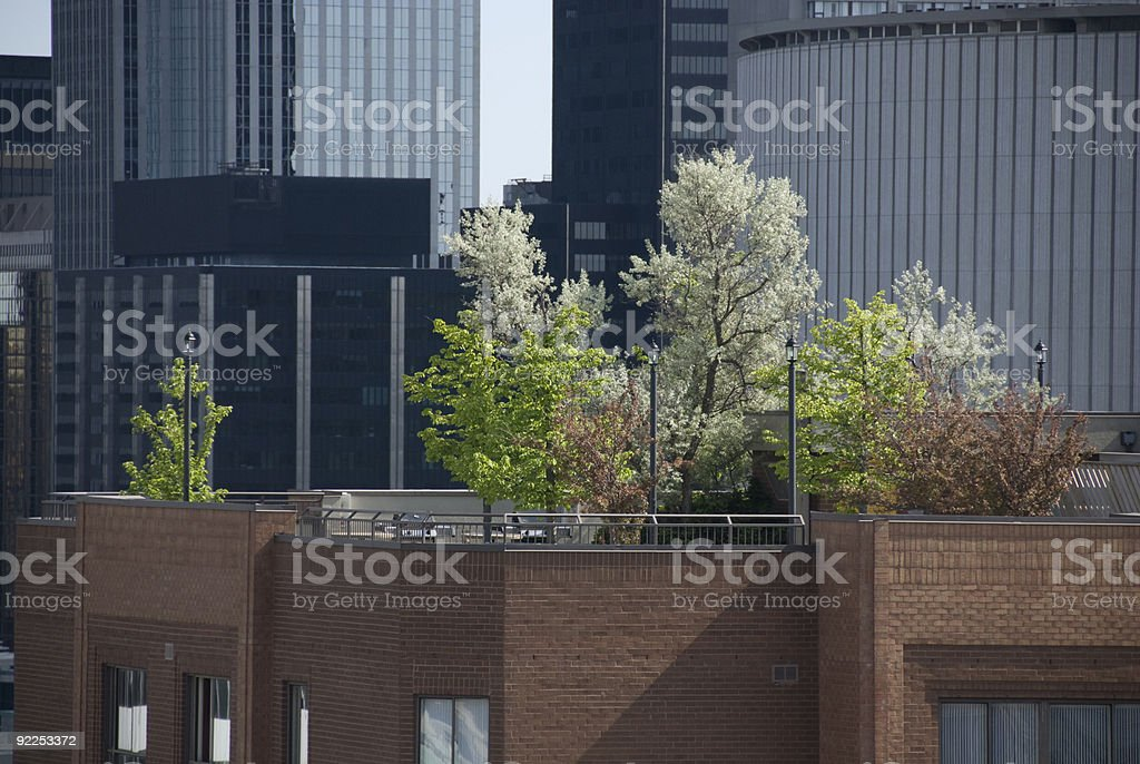 rooftop gardens stock photo