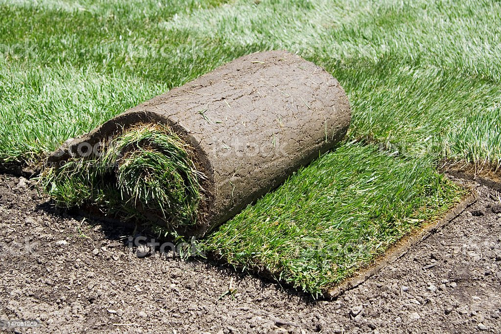 Rool of sod royalty-free stock photo