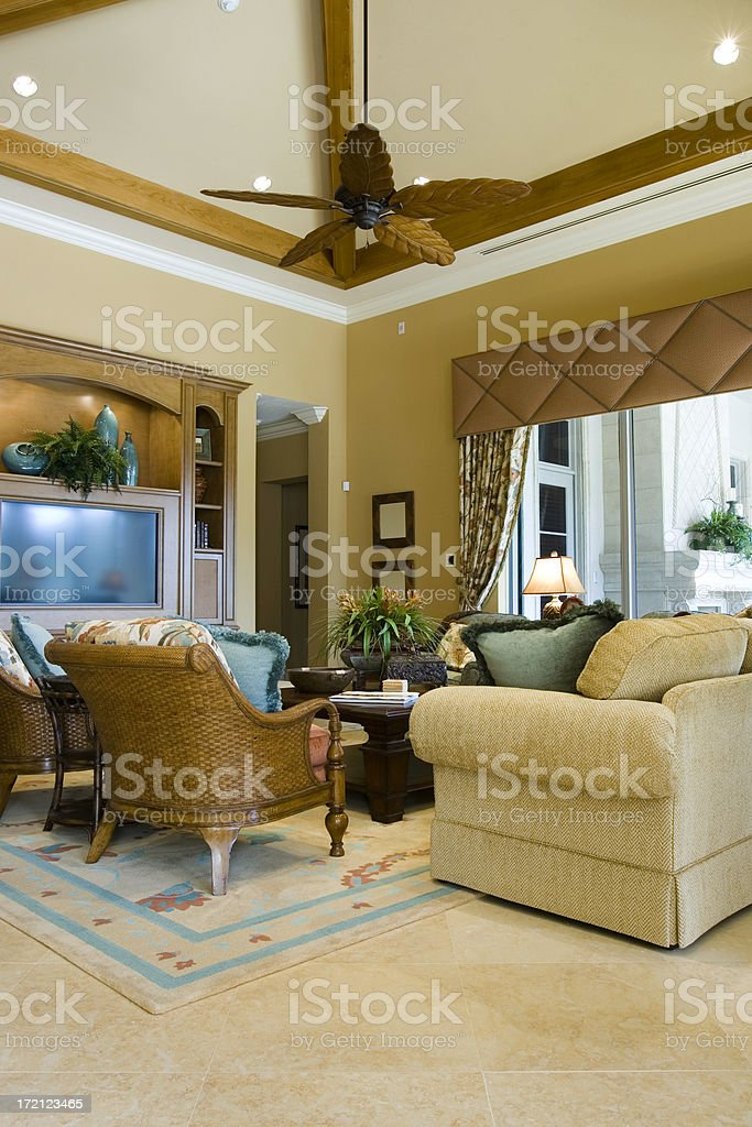 TV Room royalty-free stock photo