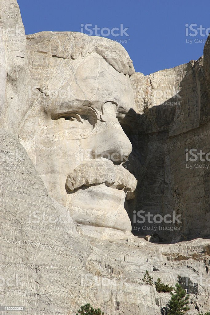 Roosevelt Close Up stock photo