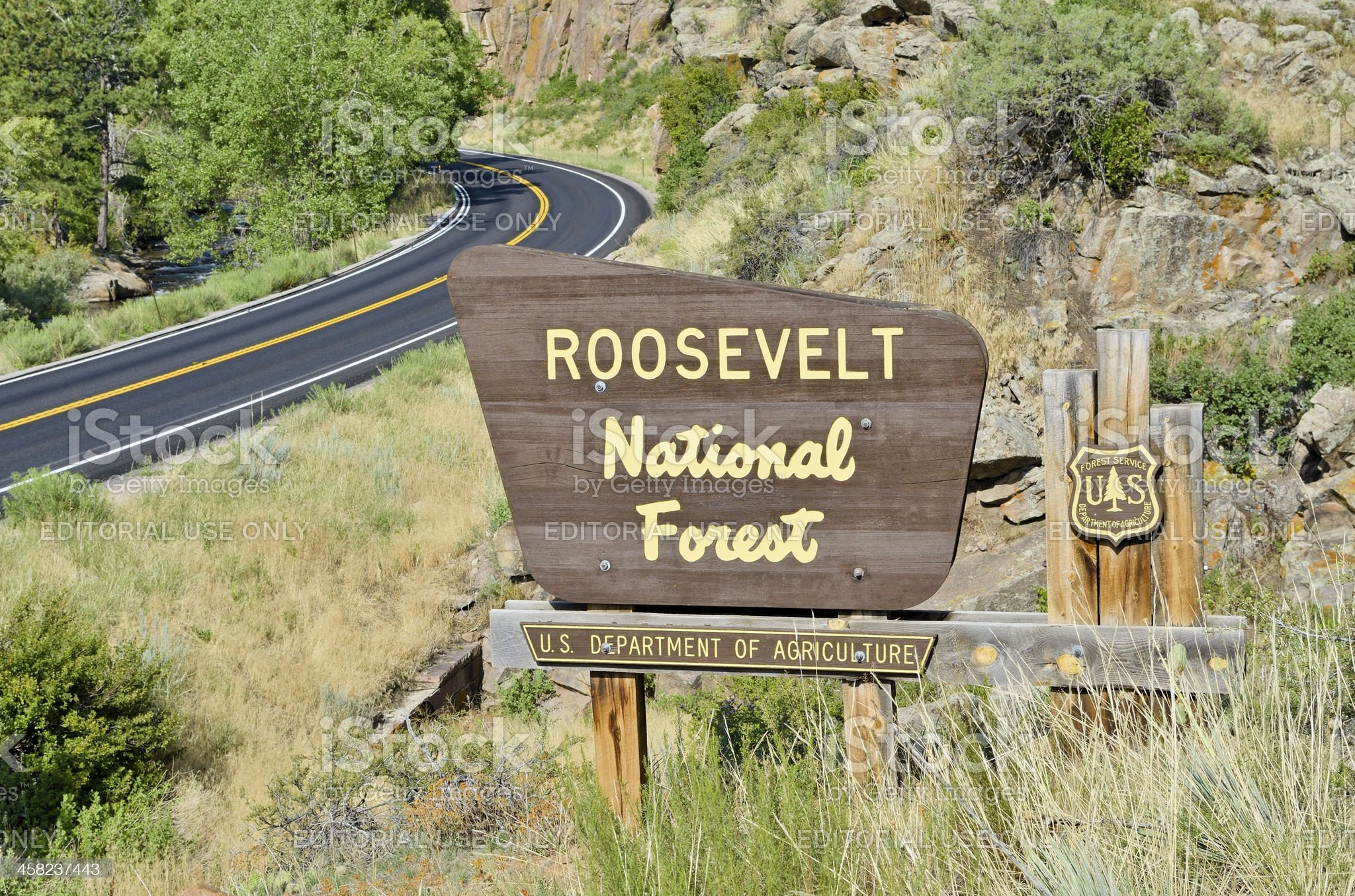 Roosevelt National Forest royalty-free stock photo