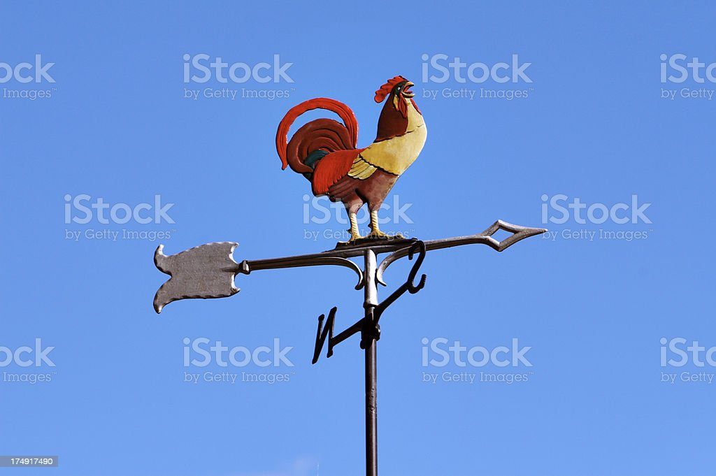 rooster and the winds #2 stock photo
