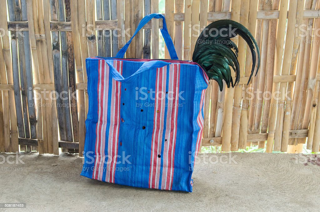 Rooster in a plastic bag during a cockfight stock photo