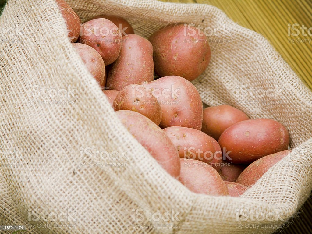 Rooster potatoes royalty-free stock photo