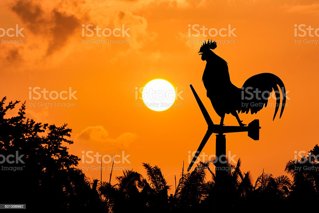Roosters crow stand on a wind turbine stock photo