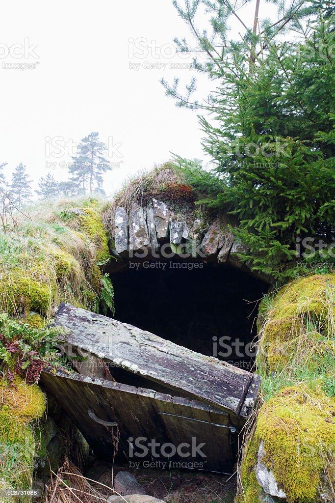 Root cellar with a broken door stock photo