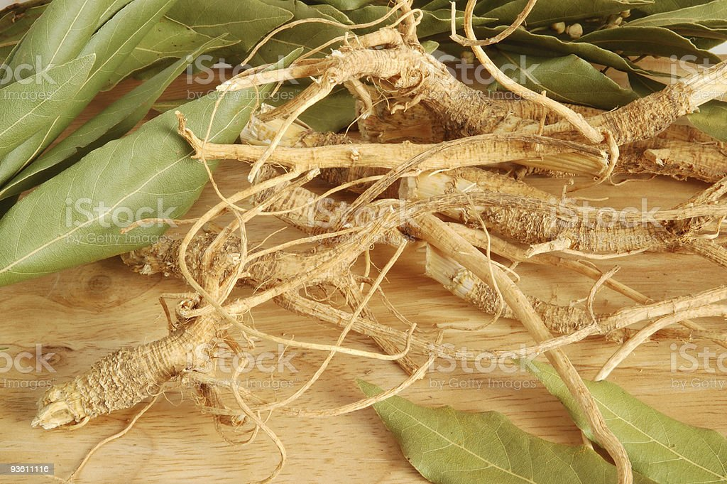 Roots and fresh bay leaves stock photo