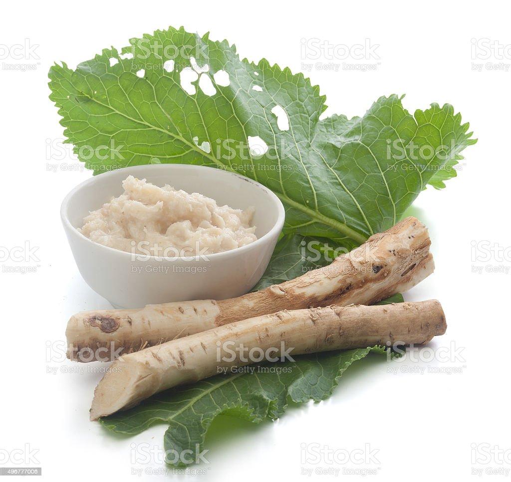 Roots of a horseradish stock photo