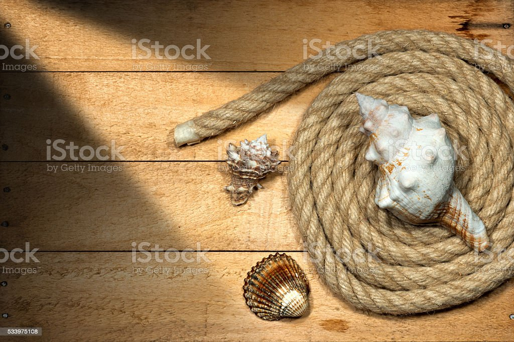 Rope and Seashells on Wooden Background stock photo