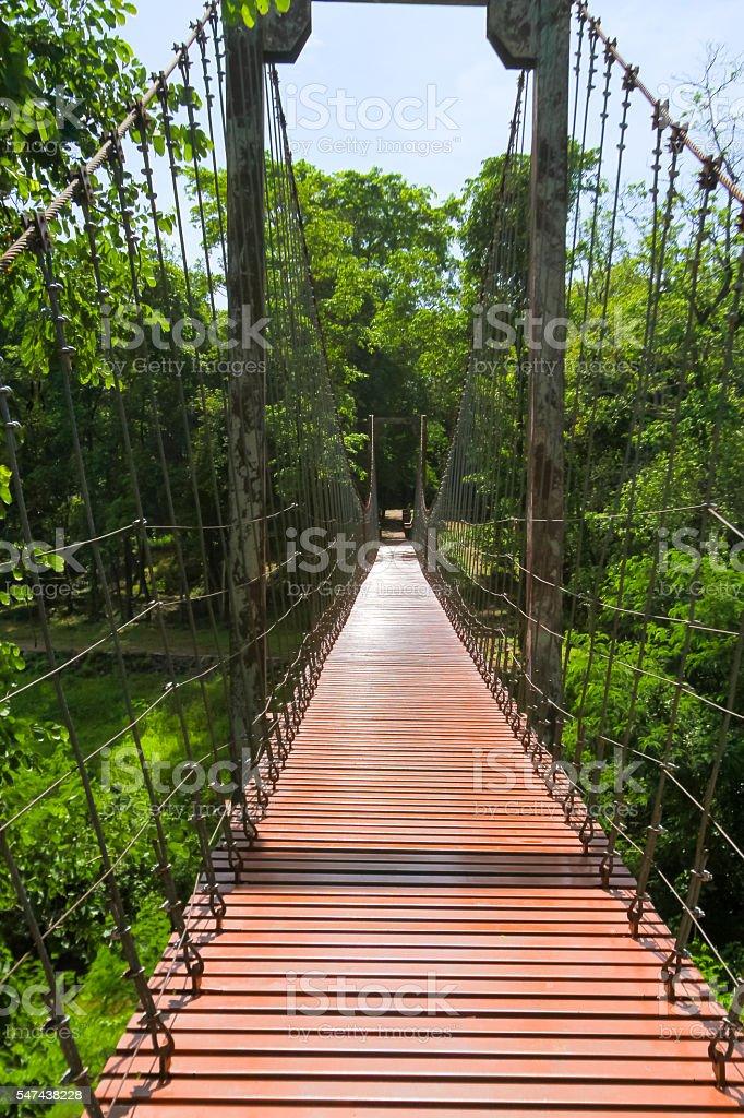 rope bridge or suspension bridge in forest at Khao Kradong stock photo