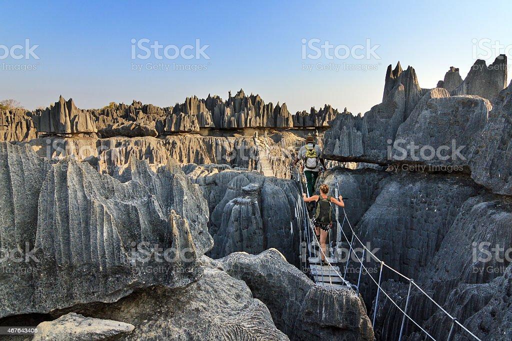 Rope bridge Tsingy stock photo