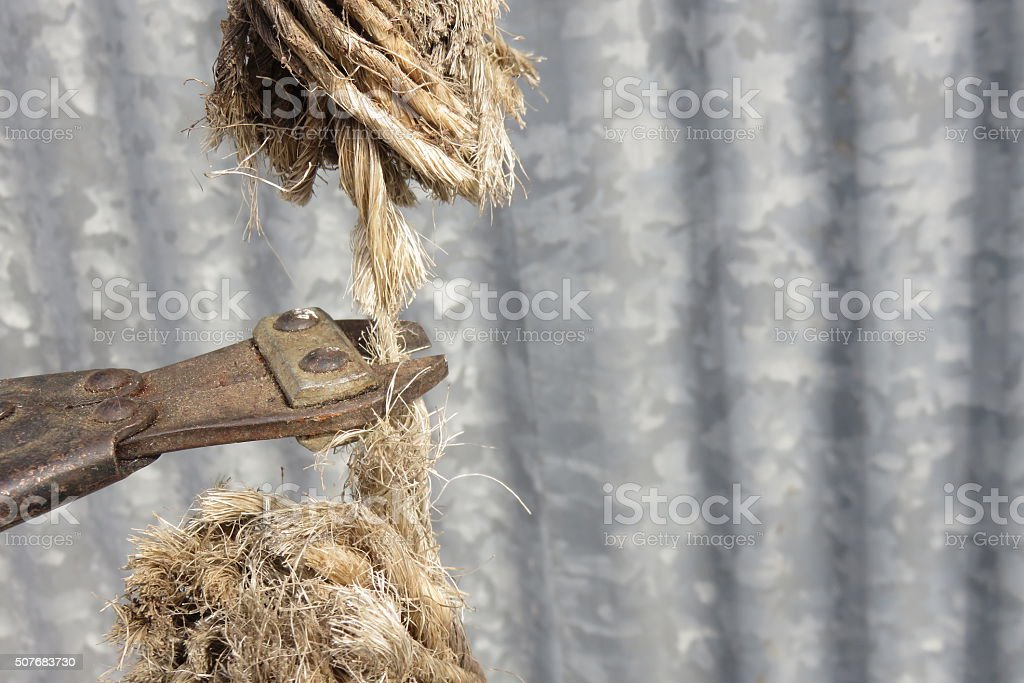 Rope cutting stock photo