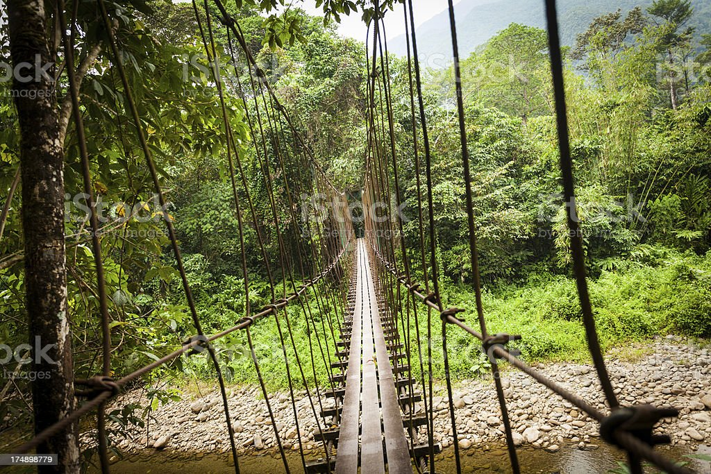 Rope Hanging Bridge Passing over a River in the Jungle royalty-free stock photo