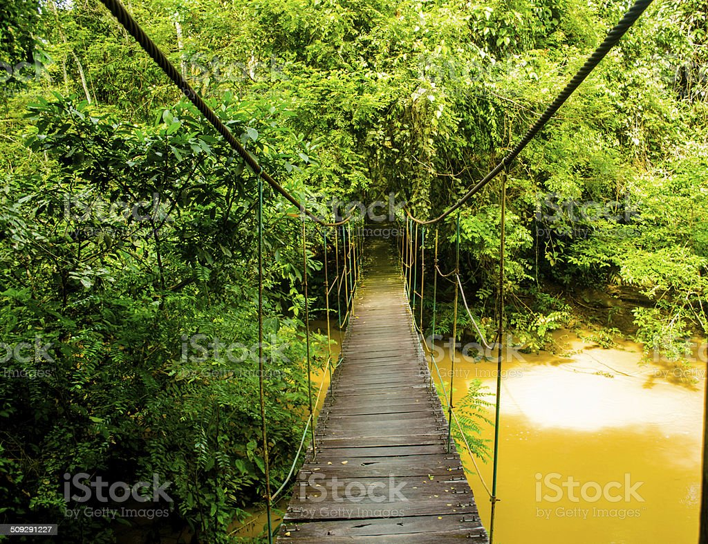 Rope Hanging Bridge stock photo