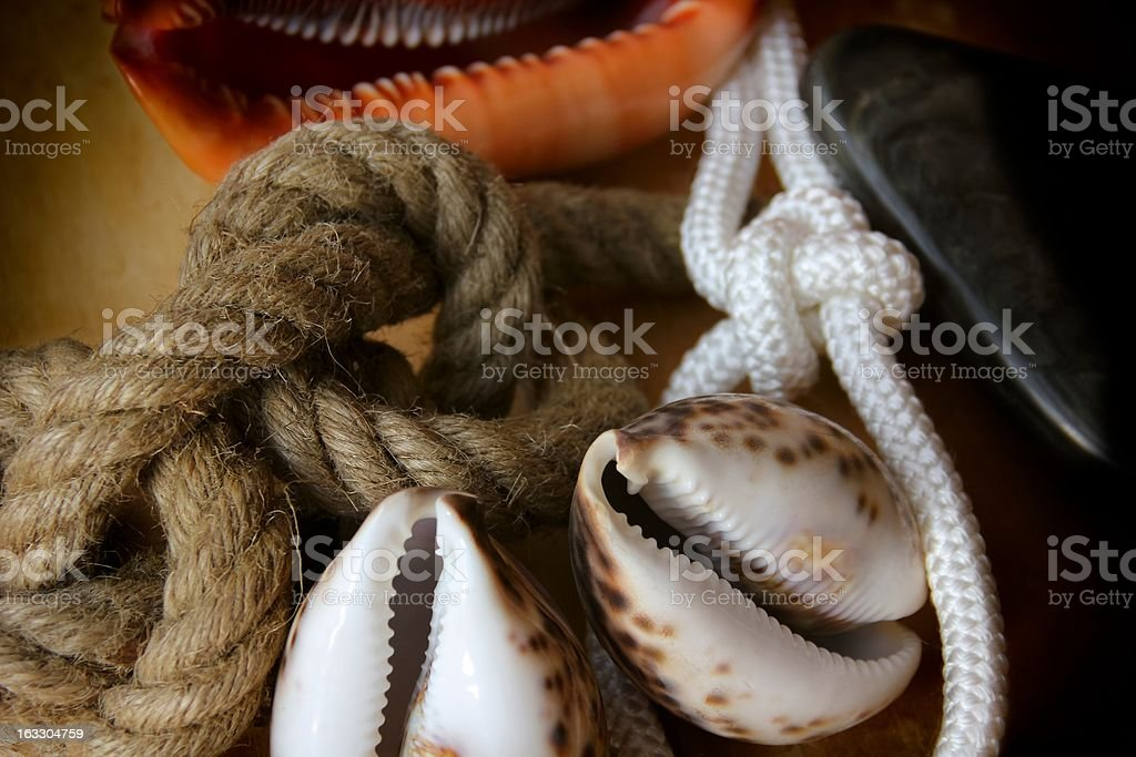 Rope Knots and Shells royalty-free stock photo