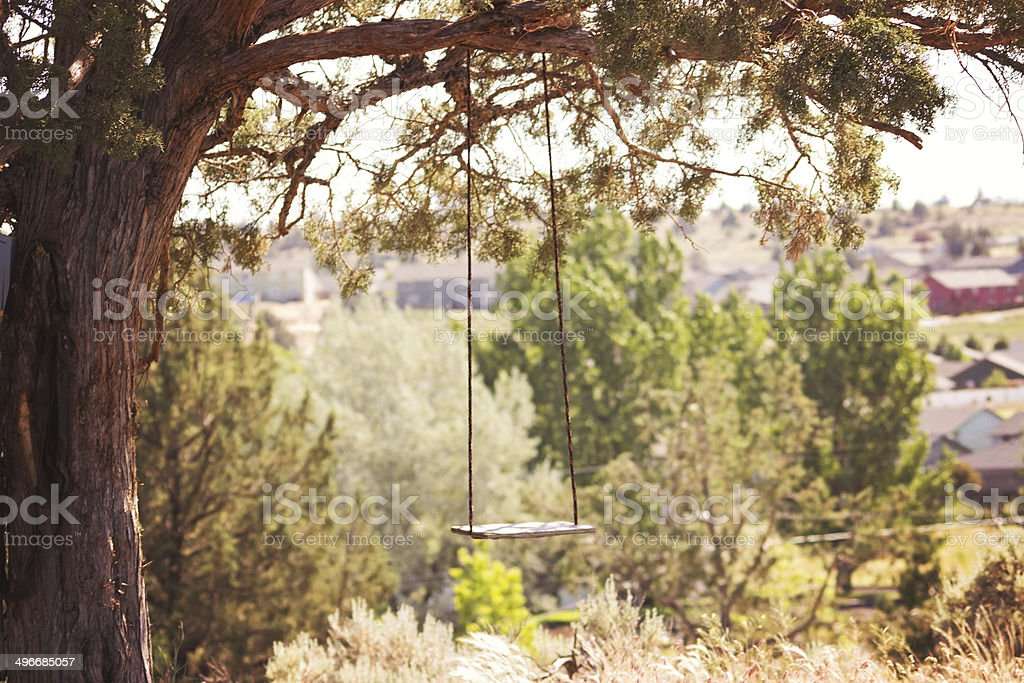 Rope Swing in the Country stock photo
