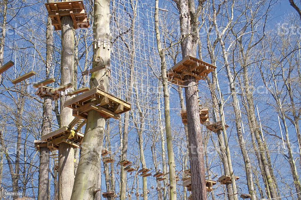 ropes course in a forest royalty-free stock photo
