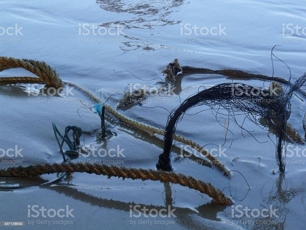 Ropes in a wet sandy beach stock photo